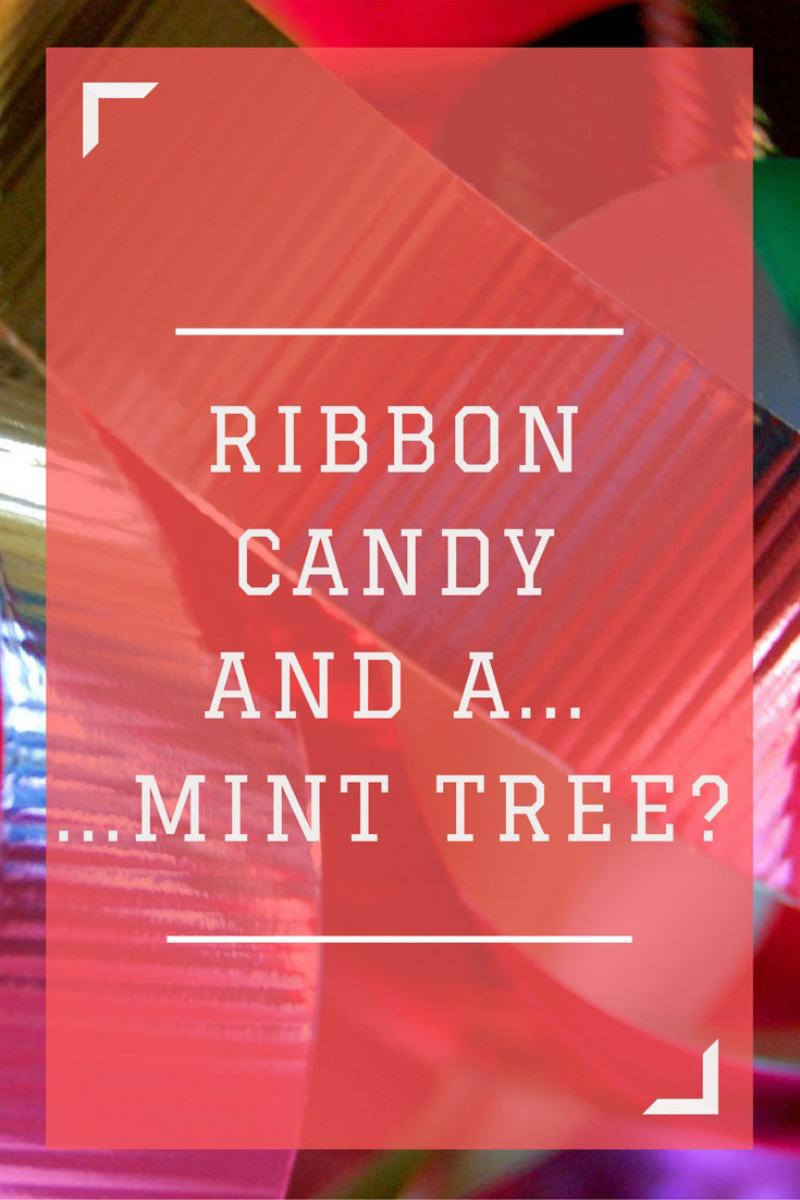 Ribbon candy and mints from a mint tree
