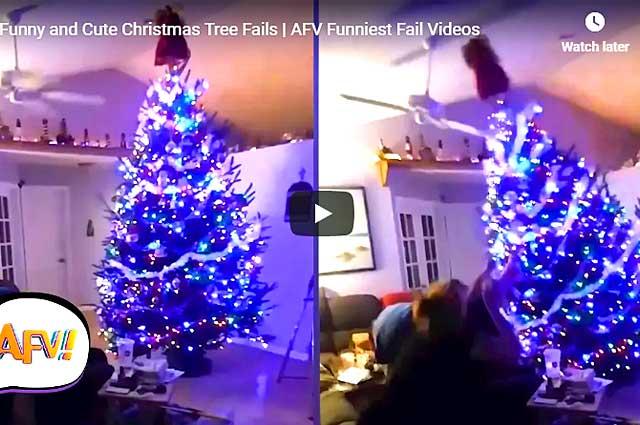 Funny Christmas Tree Fails