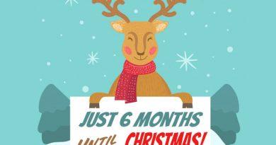6 Months Til Christmas